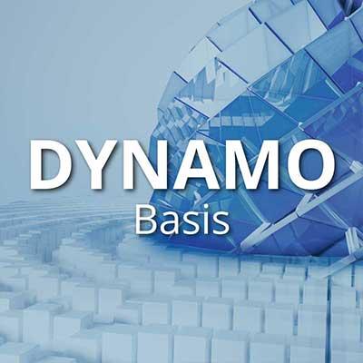 dynamo_basis
